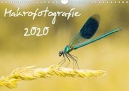 Makrofotografie Kalender 2020 (Wandkalender 2020 DIN A4 quer)