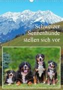 Schweizer Sennenhunde stellen sich vor (Wandkalender 2020 DIN A3 hoch)