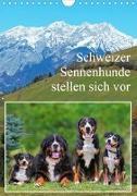 Schweizer Sennenhunde stellen sich vor (Wandkalender 2020 DIN A4 hoch)