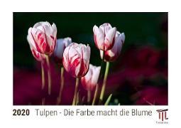 Tulpen - Die Farbe macht die Blume 2020 - Timokrates Kalender, Tischkalender, Bildkalender - DIN A5 (21 x 15 cm)