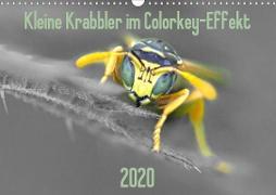 Kleine Krabbler im Colorkey-Effekt (Wandkalender 2020 DIN A3 quer)