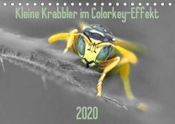 Kleine Krabbler im Colorkey-Effekt (Tischkalender 2020 DIN A5 quer)