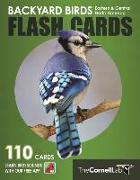 Backyard Birds Flash Cards - Eastern & Central North America