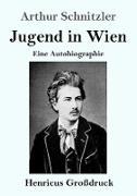 Jugend in Wien (Großdruck)