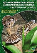 Der mexikanische und mittelamerikanische Krallengecko