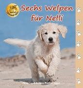 Sechs Welpen für Nelli