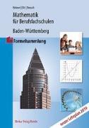 Mathematik für Berufsfachschulen in Baden-Württemberg