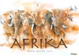 Bodo Meier Afrika 2021