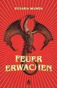 Feuererwachen (Bd. 1)