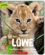 So lebt der Löwe