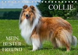 Collie - Mein bester Freund (Tischkalender 2021 DIN A5 quer)