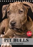 Pit Bulls und Freunde (Tischkalender 2021 DIN A5 hoch)