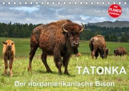 TATONKA Der nordamerikanische Bison (Tischkalender 2021 DIN A5 quer)