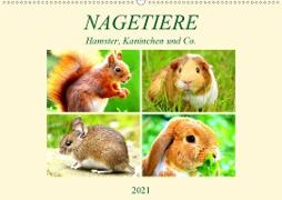 Nagetiere. Hamster, Kaninchen und Co. (Wandkalender 2021 DIN A2 quer)