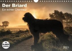 Der Briard 2021 - Ein echter Charmeur (Wandkalender 2021 DIN A4 quer)
