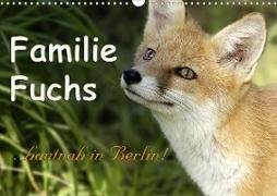 Familie Fuchs hautnah in Berlin (Wandkalender 2021 DIN A3 quer)