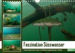 Faszination Süsswasser (Wandkalender 2021 DIN A4 quer)