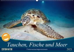 Tauchen, Fische und Meer (Wandkalender 2021 DIN A2 quer)