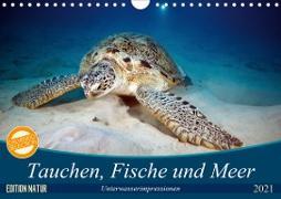 Tauchen, Fische und Meer (Wandkalender 2021 DIN A4 quer)