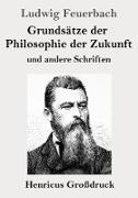 Grundsätze der Philosophie der Zukunft (Großdruck)