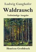 Waldrausch (Großdruck)