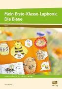 Mein Erste-Klasse-Lapbook: Die Biene