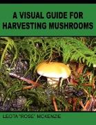 A Visual Guide for Harvesting Mushrooms