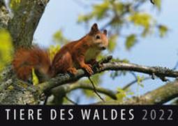 Tiere des Waldes 2022