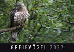 Greifvögel 2022