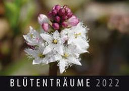 Blütenträume 2022