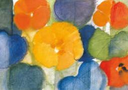 Kapuzinerkresse - Kunst-Faltkarten ohne Text (5 Stück)