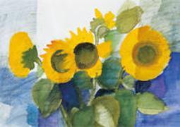 Vier Sonnenblumen - Kunst-Faltkarten ohne Text (5 Stück)