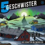 CD Der Schatten im ewigen Eis - 5 Geschwister (19)