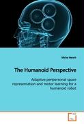 The Humanoid Perspective