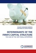 DETERMINANTS OF THE FIRM'S CAPITAL STRUCTURE