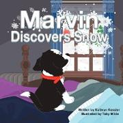 Marvin Discovers Snow