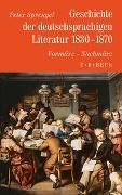 Geschichte der deutschen Literatur Bd. 8: Geschichte der deutschsprachigen Literatur 1830-1870