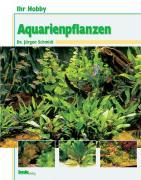Ihr Hobby Aquarienpflanzen